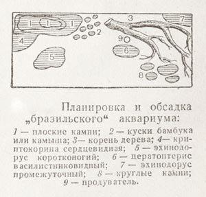Планировка аквариума