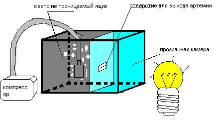 Вариант емкости для вывода артемий