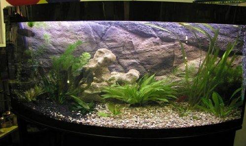 beskarkasnyj-akvarium