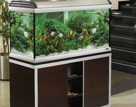 komplektacziya-akvariuma