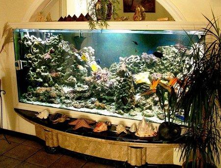 material-dlya-akvariuma